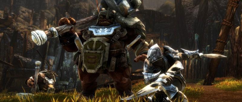 Kingdoms of Amalur : Re-Reckoning (Remaster) - Kaiko - THQ Nordic